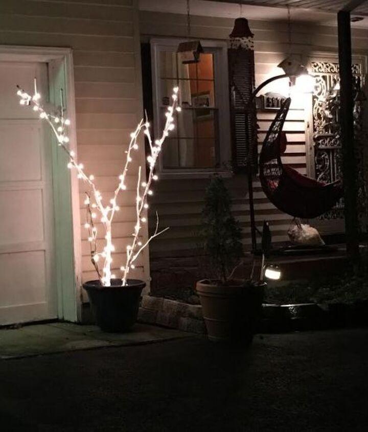 twig x mas lights, gardening