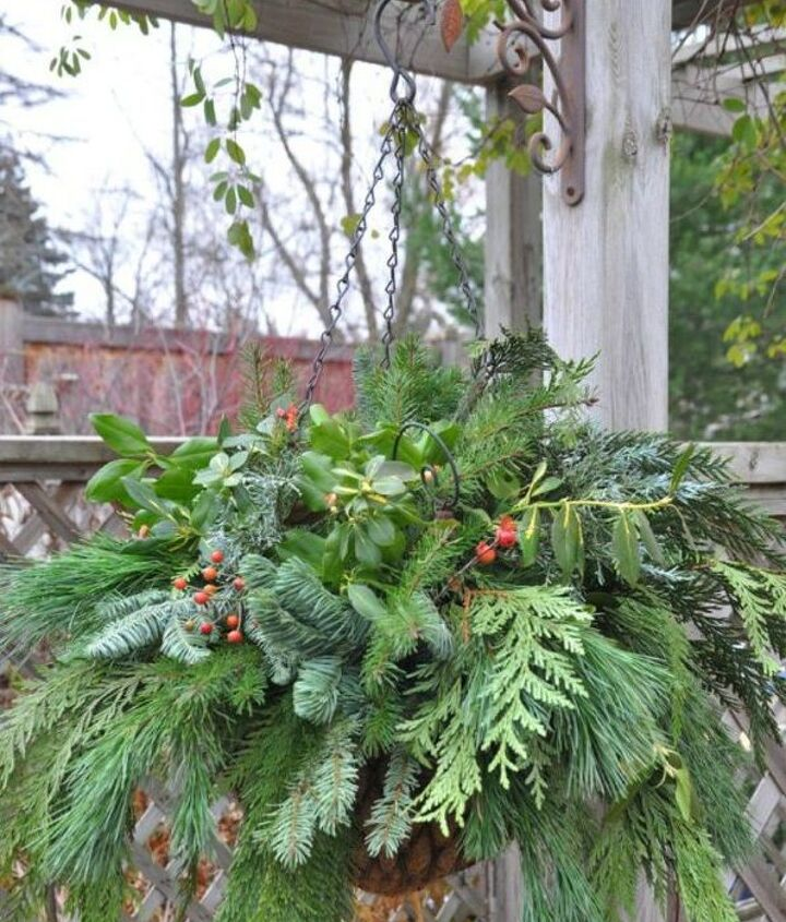 s 13 winter planter ideas for when you re missing your garden, gardening, A hanging basket full of cold weather plants