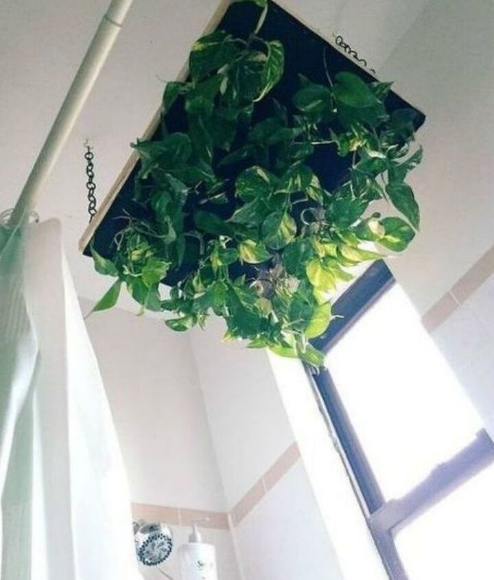 s 13 winter planter ideas for when you re missing your garden, gardening, An indoor raining plant hanger