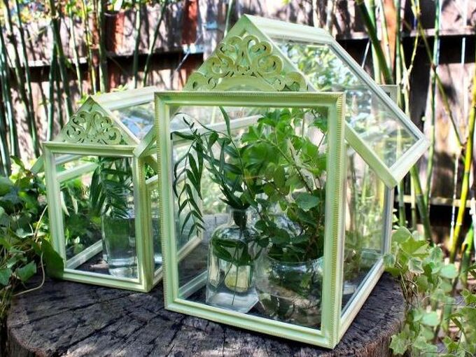 dollar store frame terrariums, gardening, terrarium