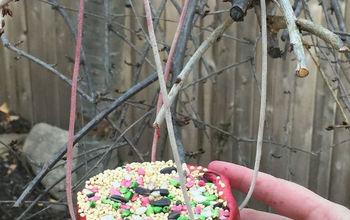 Pomegranate Bird Feeder
