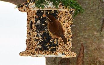 winter fun diy create bird seed cottage feeder, gardening