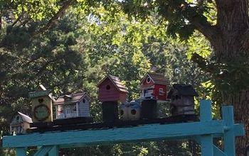 Birds  Motel