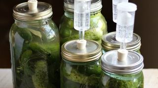 Save Your Pickle Jars We Know What To Do With Them Hometalk