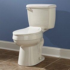 q the dreaded ring in the toilet, bathroom ideas