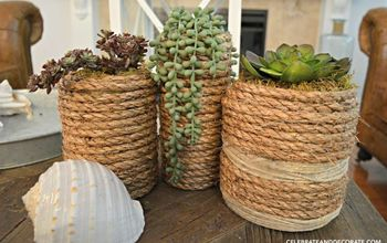 diy succulent vases, flowers, gardening, succulents