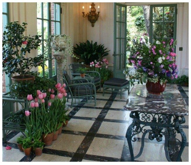 guide to growing indoor plants, gardening