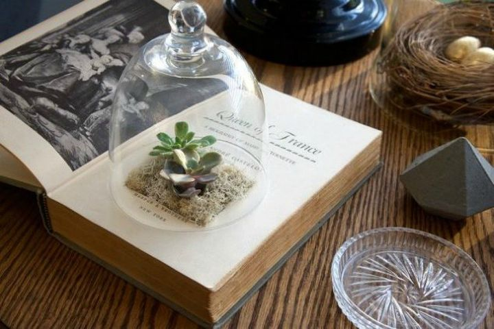 s make your neighbors giggle with these x planter ideas, gardening, Cut out an old book into a succulent planter