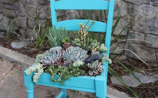 upcycled succulent chair, flowers, gardening, succulents