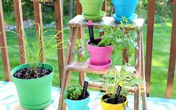 Our Little Herb Garden