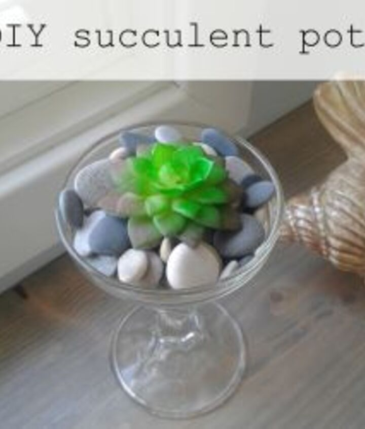 diy succulent planters and pots from the dollar store, flowers, gardening, succulents