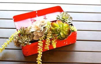 Repurpose an Old Toolbox Into a Planter for Succulents