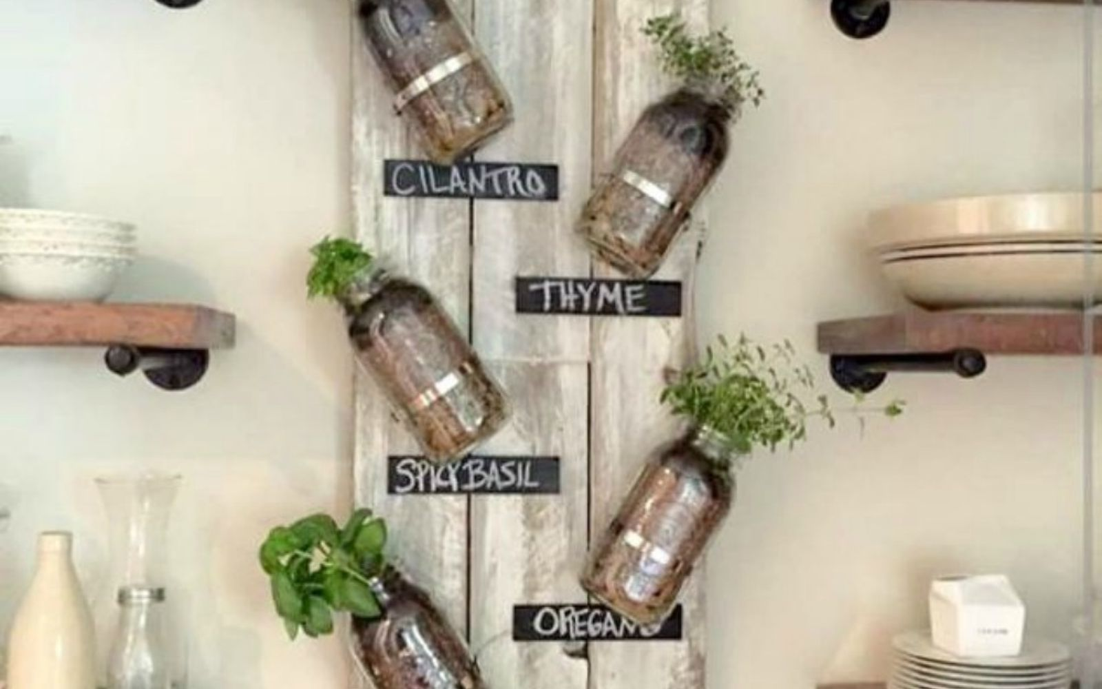 s get rid of kitchen countertop clutter with 13 clever mason jar ideas, countertops, kitchen design, mason jars, organizing, Or mount that herb garden on your wall