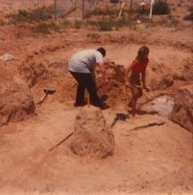 e throw back thursday diy inground pool dug by hand shovel 1970 s, pool designs, repurposing upcycling