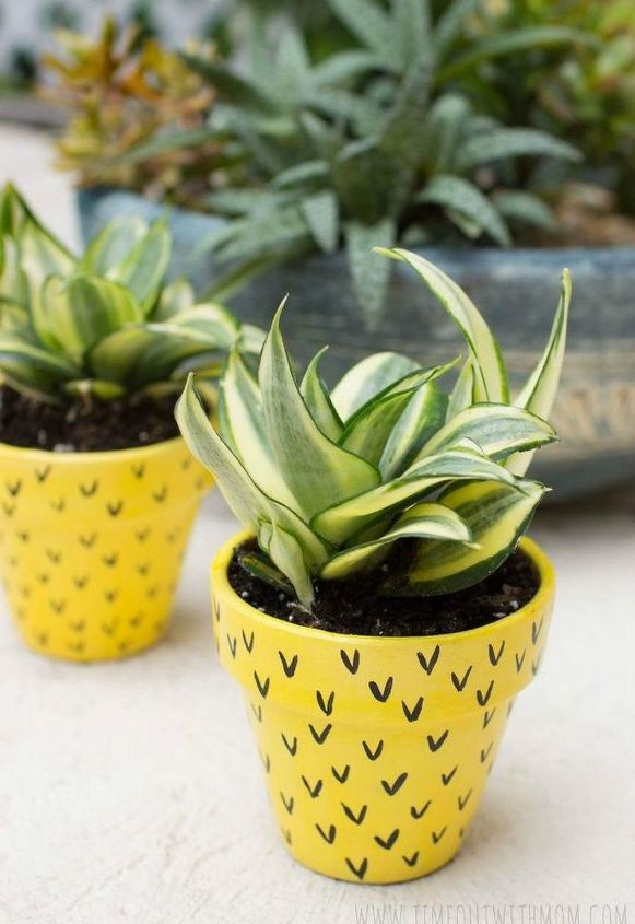 s 15 insanely cute reasons to add pineapple to your decor, home decor, They brighten up your boring pottery