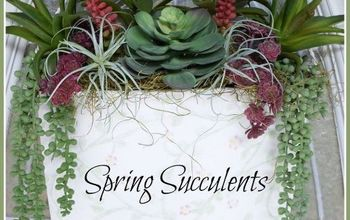 Spring Succulents for the Front Door