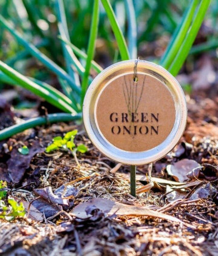 s 14 awesome things you didn t know you could do with jar and tin lids, Turn them into plant labels