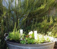 how to set up your own container garden in 7 easy steps, how to