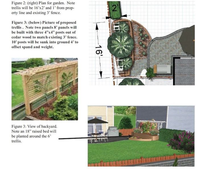 raised bed and trellis, gardening, raised garden beds