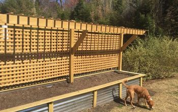 Raised Bed and Trellis