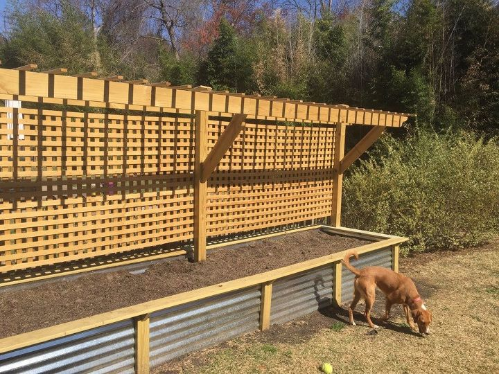 Favorite Raised Bed and Trellis | Hometalk XV18