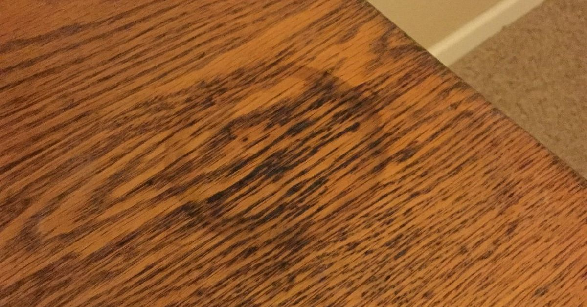 98 Dark Water Stains On Hardwood Floors How To Get Dog