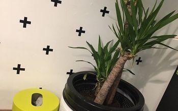washing machine turned planter, appliances, gardening