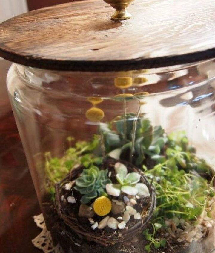 s 21 of the cutest terrariums we ve ever seen, gardening, terrarium, This one that sits in a big jar