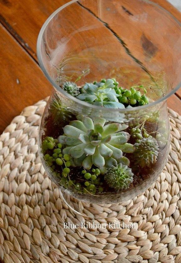 s 21 of the cutest terrariums we ve ever seen, gardening, terrarium, This pretty one made in a vase