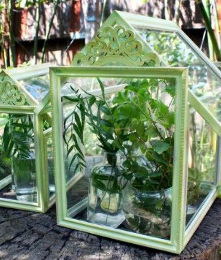 s 21 of the cutest terrariums we ve ever seen, gardening, terrarium, This fancy one using dollar store frames