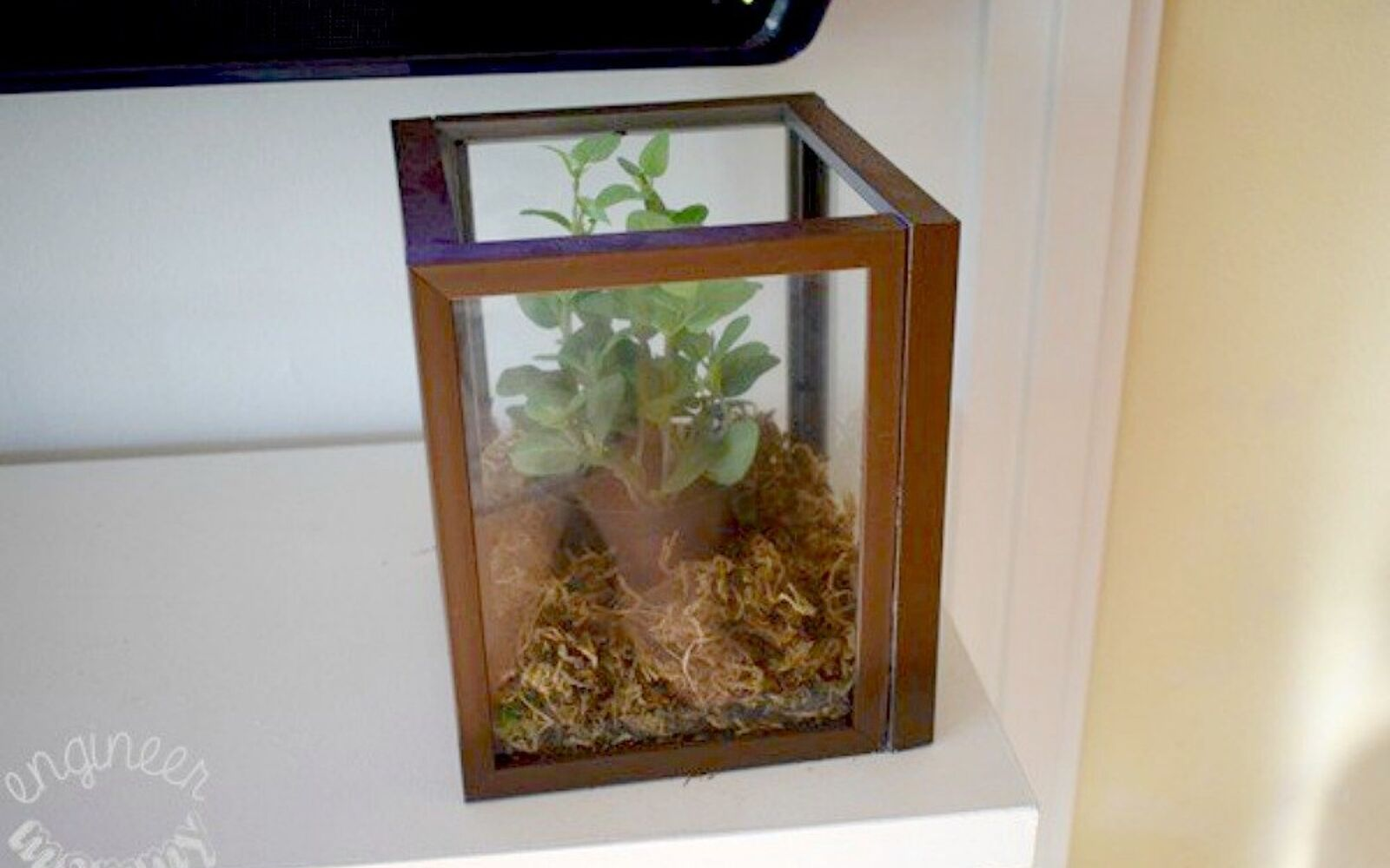 s 21 of the cutest terrariums we ve ever seen, gardening, terrarium, This square one made from picture frames