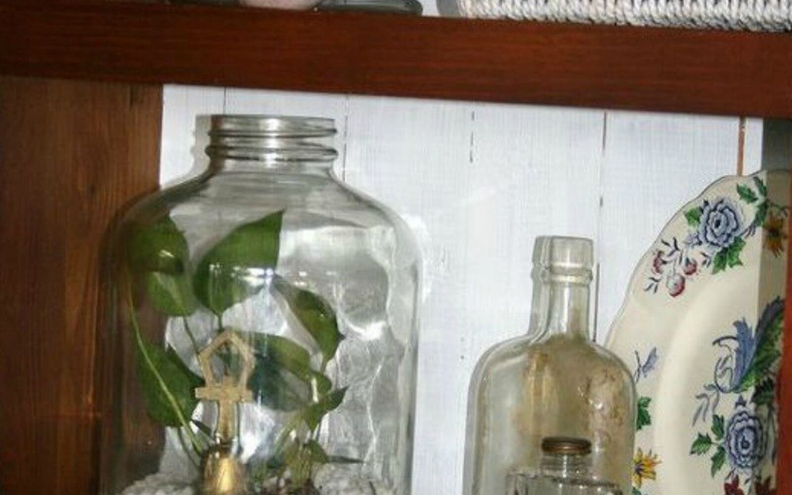s 21 of the cutest terrariums we ve ever seen, gardening, terrarium, This cute one made in a bottle