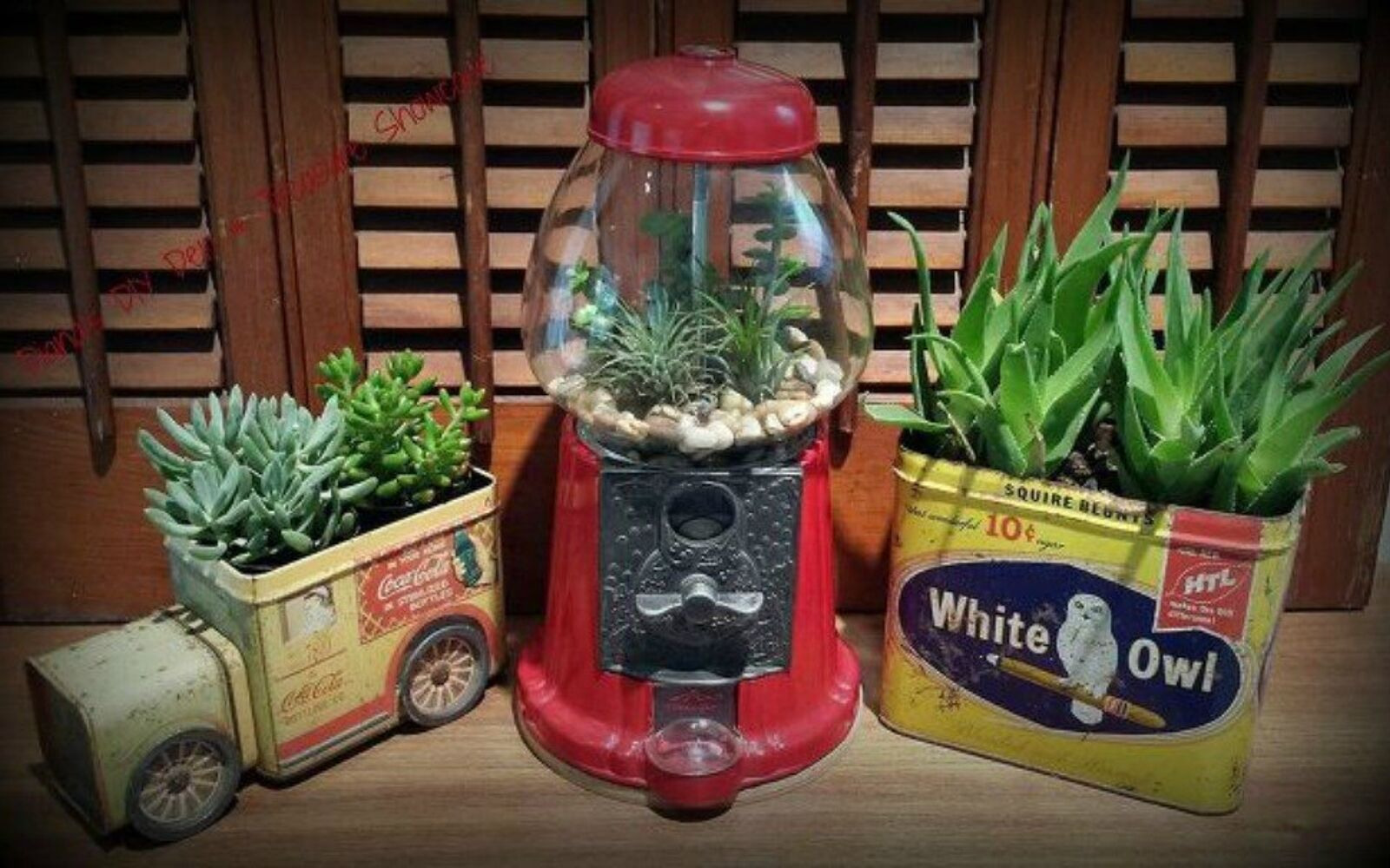 s 21 of the cutest terrariums we ve ever seen, gardening, terrarium, These cute ones made from vintage containers