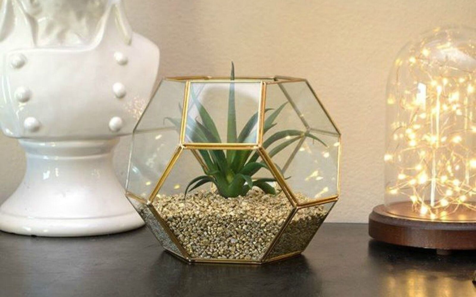 s 21 of the cutest terrariums we ve ever seen, gardening, terrarium, This hexagon shaped one