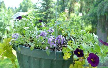 Colorful Flower Planter Ideas for Sun