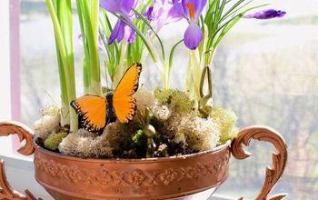 spring planter arrangement