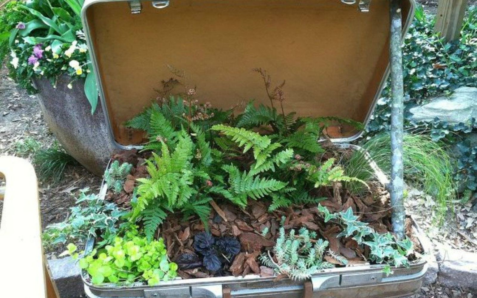 s don t throw out your old suitcase before you see these 15 clever ideas, Plant your favorite herbs in it