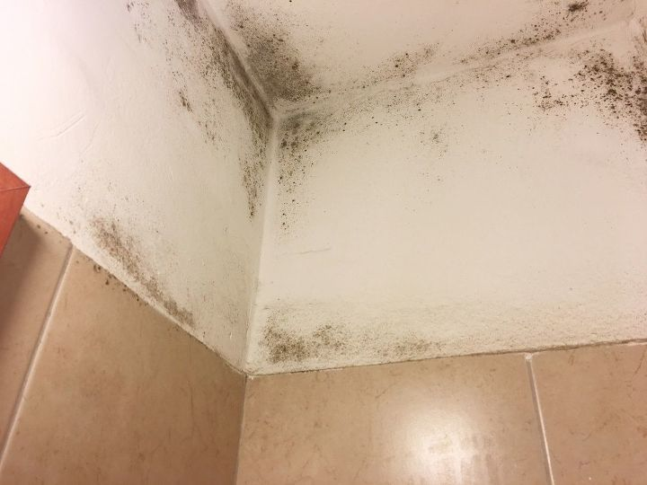 q bad case of mold in the bathroom cleaned