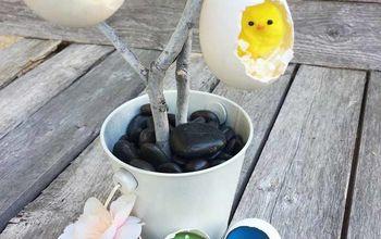 Eggshell Terrariums