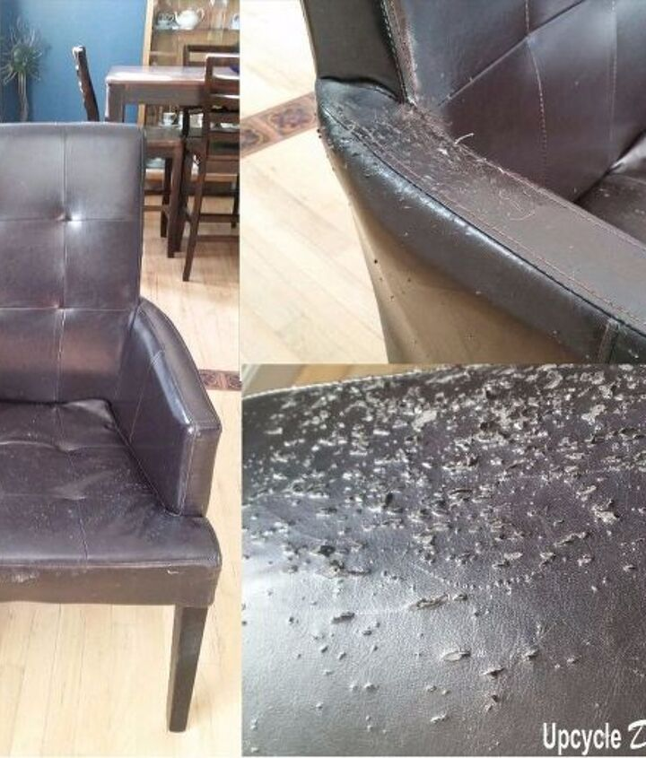 cat proof chair cover up chair repair with vinegar glue