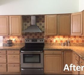 Mini Kitchen Makeover With Diy Under Cabinet Lighting, Animals, Appliance  Repair, Appliances,