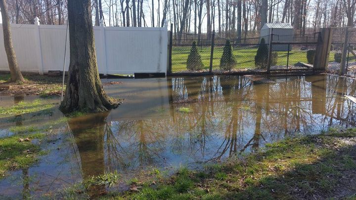 What Can I Do About Standing Water In My Backyard Hometalk