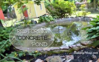 Restoring a Concrete Pond :: With Help From HomeTalk