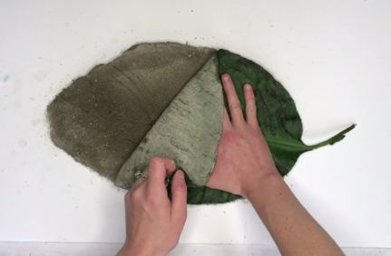 giant leaf stepping stones