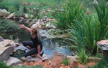 ART-Rockin the Garden!