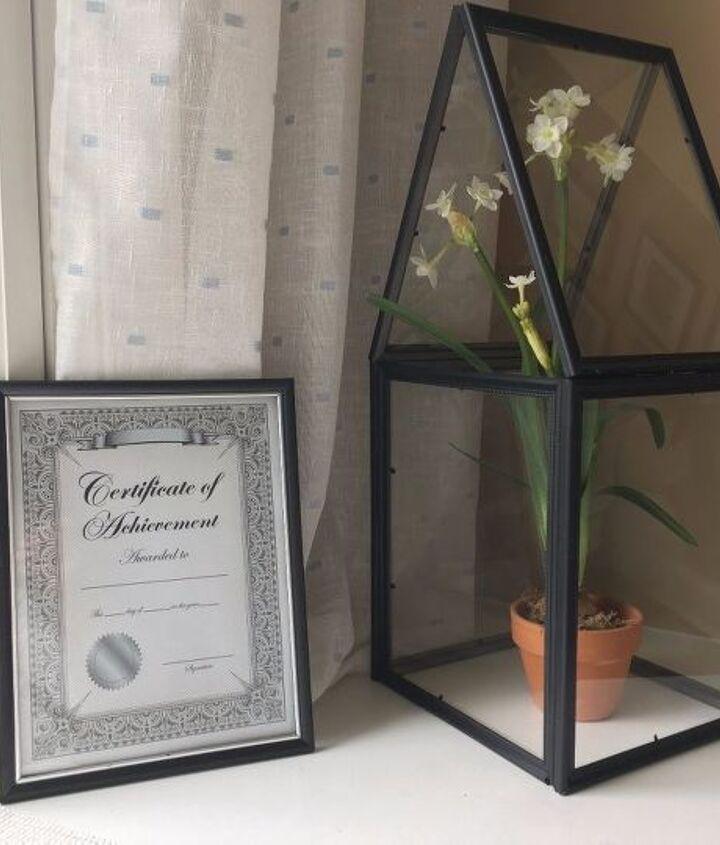 dollar store picture frame terrarium