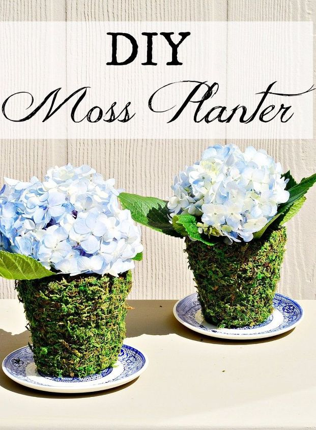 diy moss planter terra cotta pots