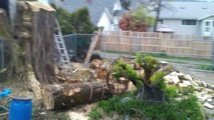 q free wood or can i make garden stuff with it it s poplar
