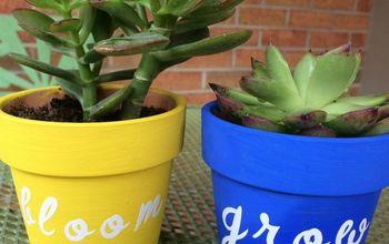 painted terra cotta pots for succulents