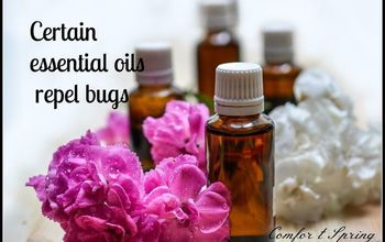 Tell Bugs To Bug Off: Natural Remedies To Repel Bugs